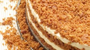 Torta za 100 - bez pečenja