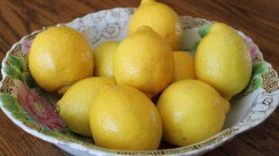 JESTE LI ZNALI? Ako ga pravilno čuvate, limun može biti svjež i do mjesec dana!